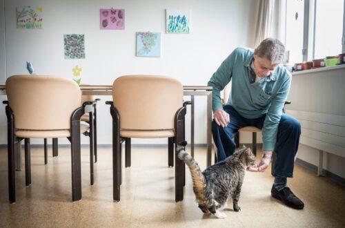 Katze Luana tröstet betagte Menschen im Altersheim in Kreuzlingen